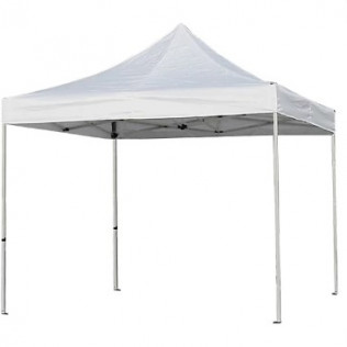 *10' x 10' Party Tent
